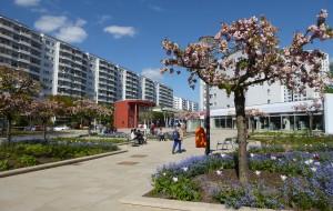 Gebietsbeauftragte für das Aktive Stadtzentrum Marzahner Promenade